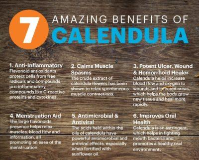 Calendula Flower essential oil Canadian Tea tree